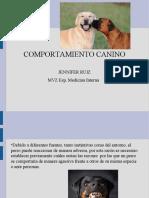 COMPORTAMIENTO (1)
