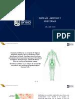 Sistema linfático y linfedema (1)