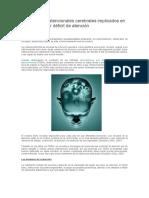 Los Sistemas Atencionales Cerebrales Implicados en El Trastorno Por Déficit de Atención