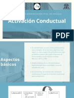 Activación conductual Presentación