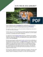 Especismo Intervenir en la vida de otros animales