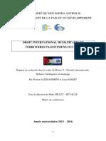 F. Alessandrini, L. Maret, DIH et territoires palestiniens occupés