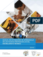 Manual de Estandares de Aprendizaje de Las Figuras Profesionales Del Bachillerato Tecnico