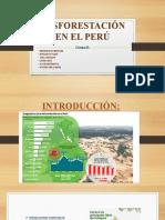 Desforestación en El Perú Final