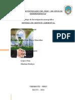 Sistema de Gestión Ambiental Fin
