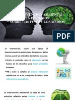 La Intervencion Ambiental m