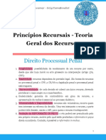Princípios Recursais - Teoria Geral Dos Recursos