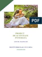 proiect didactic gradul I