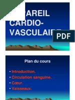 anatomie-appareil_cardio-vasculaire-Copie