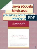 NEM ORIENTACIONES Y PRINCIPIOS PEDAGOGICOS