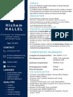 Black Professional Resume 2