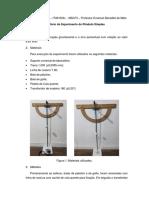 Pendulo Simples - Bruno Caio Rodrigues IT301004x