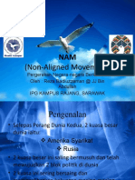NAM (NON ALIGNED MOVEMENT)