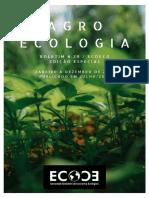 TERRITORIALIZAÇÃO DA AGROECOLOGIA NA VIA CAMPESINA boletim_39 ECOCO