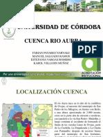 GESTIÓN_RIO AURRA
