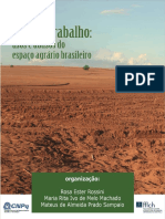Terra e Trabalho Usos e Abusos Do Espaço Agrário Brasileiro Rossini 86467