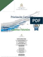 7 Priorizacion Curricular -Ciencias Naturales UQfmFqO