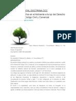 Daños Ambiental Doctrina CCC