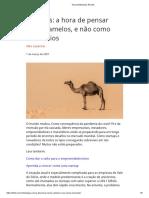 Startups A hora de pensar como camelos e não como unicórnios