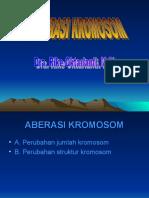 ABERASI KROMOSOM