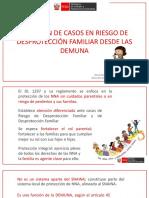 La atención de casos de riesgo de desprotección familiar Flujograma del procedimiento y plazos