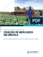 Angola-Country-Private-Sector-Diagnostic-Creating-Markets-t-Through-the-Private-Sector