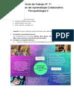 Guia-de-Trabajo- N  11 PSICOPATOLOGIA 2021.docx(N) (2)