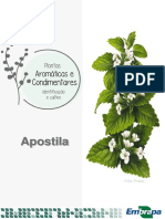 Apostila Aromaticas e Condimentares