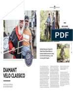 Diamant Katalog 2020-12-12