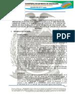 TDR SANEAM. FISICO LEGAL INST. EDUCATIVA - CHACCRAMPA