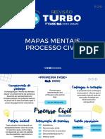Mapas Mentais - Processo Civil
