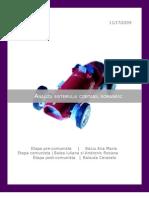 Analiza sistemului contabil romanesc1