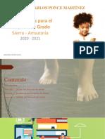 Lineamientos para el Proyecto de Grado 2020 - 2021