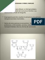 geno y familiograma-ecomapa