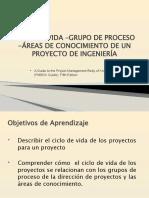 INTERACCION GRUPOS DE PROCESOS Y AREAS DE CONOCIMIENTOS