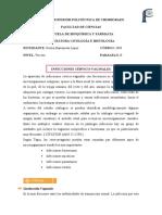 INFECCIONES CÉRVICO-VAGINALES