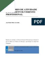 Relatório Final Ana Paula Pinto Carvalho
