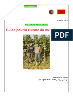 BrochureMaïsEnsilageMaroc