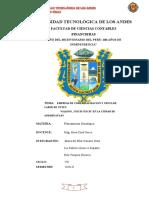 3.PROYECTO DE CRIANZA DE CUY - CUICH CUICH en la ciudad de ANDAHUAYLAS