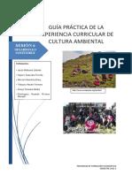 GUIA PRACTICA 6