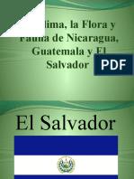 Сальвадор, Гватемала, Никарагуа