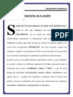 Présentation de La Société Detaillé