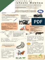 Tuberculosis Bovina resolucion 17463 poster informativo