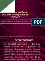 IDEA DE NEGOCIO EN EL PERU