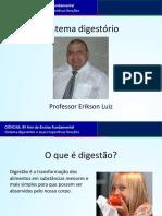 Sistema Digestório e Suas Respectivas Funções