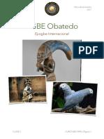 EBO-RIRU-CURSO-2017-PAGES-2da-CLASE