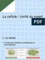 Chapitre 3 La cellule - les organites