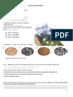 Teste - 7ºano Rochas Sedimentares