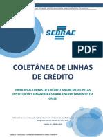 Linhas de Crédito SPv23 (1) danilo