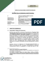 Informe final de denuncia constitucional 290